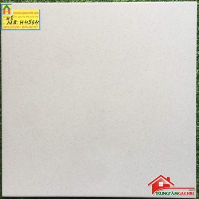 Gạch bạch mã granite 45x45 đá mờ H4504MB