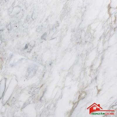 Các mẫu gạch cao cấp lát nền 90x180 nhiều vân màu sắc đẹp