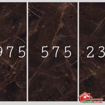 Gạch cao cấp 120x240 ấn độ bóng kiếng vân nâu tại bình chánh
