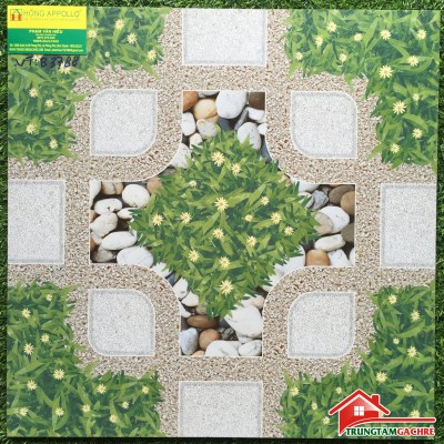 Gạch lát sân vườn -  Không đóng rêu mốc