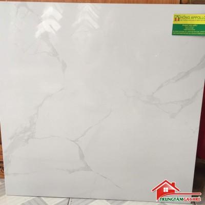 Gạch lát nền giá rẻ 60x60 bóng kiếng .6063